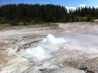Velvet Geyser in eruption