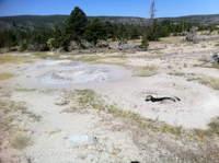 Bulger Hole 18 August A
