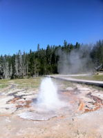 North Goggles Geyser
