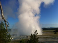 Morning Geyser
