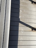 Paw prints on Grand boardwalk